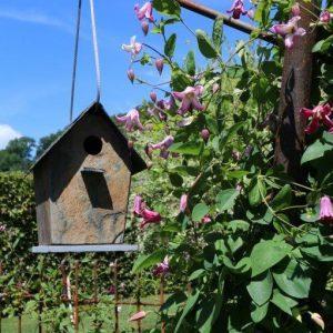 Der Verbindungsstab dient als Halter für ein Vogelhäuschen