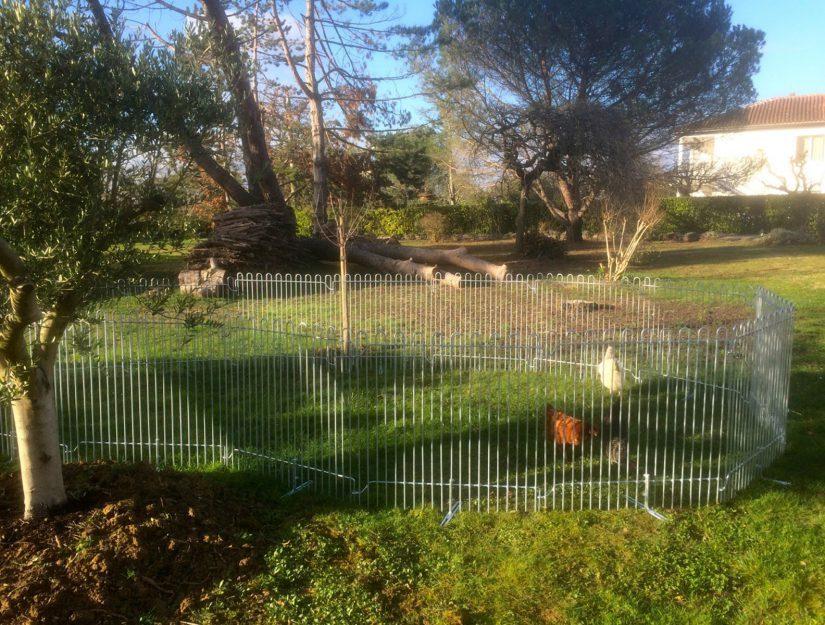 Poulailler galvanisé, avec pieds posés sur la pelouse.