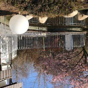 Der Zaun über dem Teich ist auf der Terrasse angeschraubt