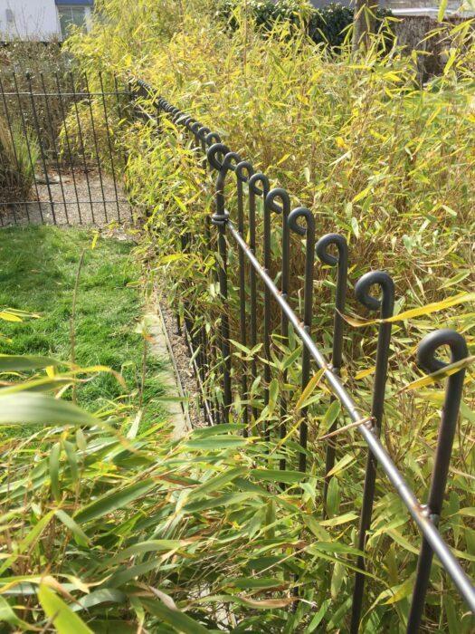 Steckzaun aus Stahl vor einer Bambushecke