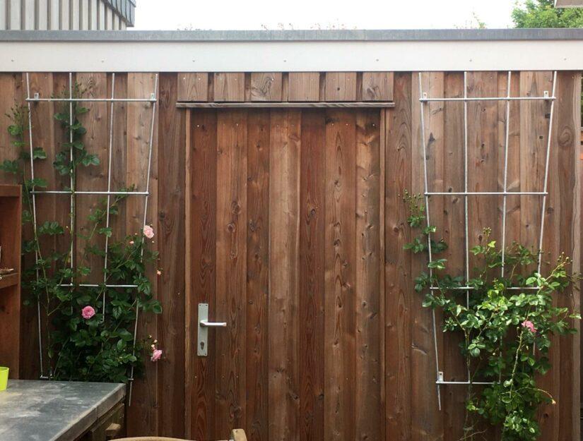 Zwei verzinkte Wandrankgitter mit Rosen am Gartenhaus.