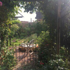 Eisenzaun mit Tür im Rosengarten