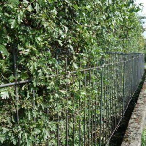 Gesteckter Zaun 145 cm hoch aus Metall vor einer Hecke