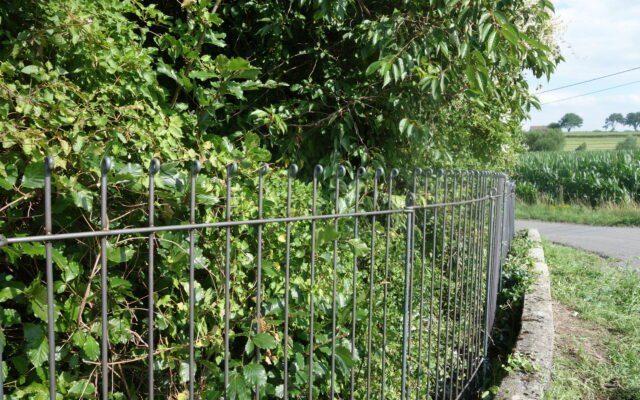 Barrière entre le mur et la haie