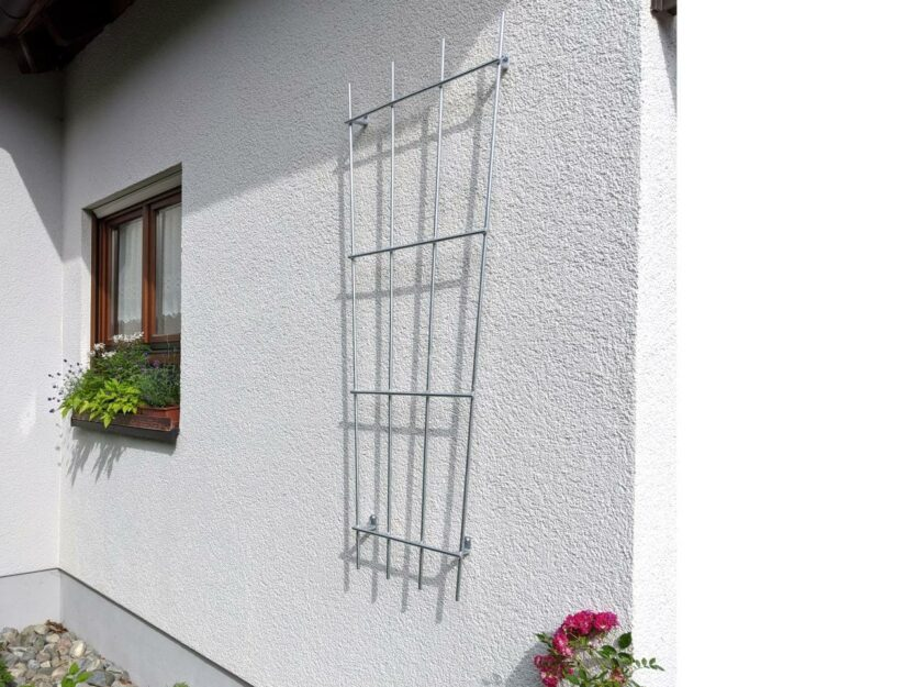 Rankhilfe aus Metall für eine Kletterrose an der Wand.