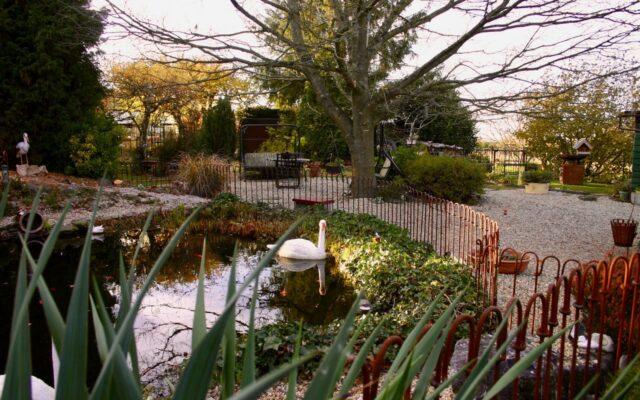 Clôture protection étang