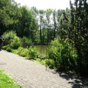 Installation d'une clôture en fer sur un lac