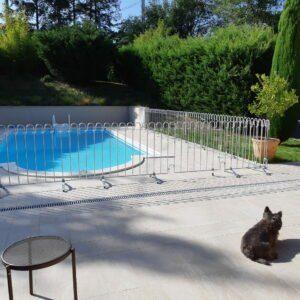 Der gestellte Zaun verhindert dass der Hund oder die Kinder in das Schwimmbecken springen