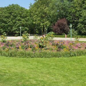 Das umzäunte Blumenbeet im Stadtpark ist vor Vandalismus geschützt.
