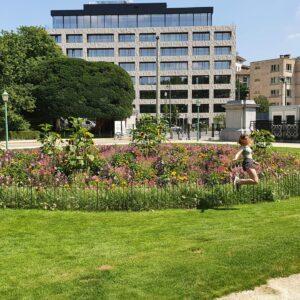 Le parterre de fleurs clôturé dans le parc municipal est protégé du vandalisme.
