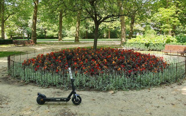 Schutz der Blumenbeete im Stadtpark