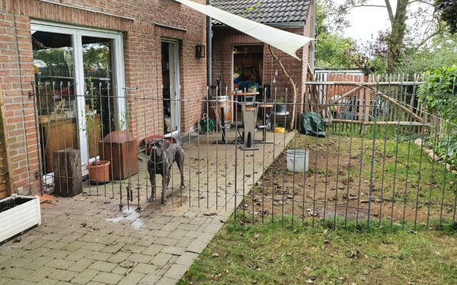 Séparation sur la terrasse pour le chien
