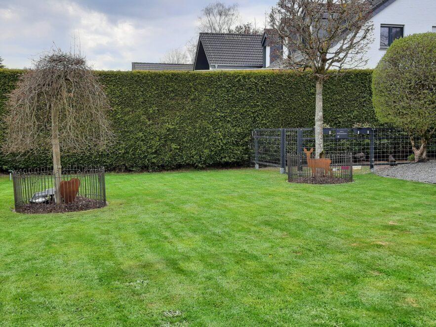 2 Baumscheiben sind mit einem niedrigen Zaun aus Eisen geschützt