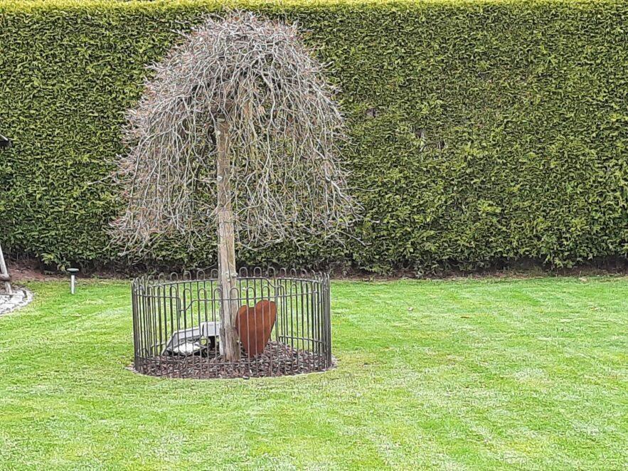 Rund gebogener Zaun aus Stahl um einen Baum