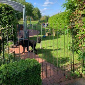 Hundezaun mit Tür, Federriegel und Bodenrolle