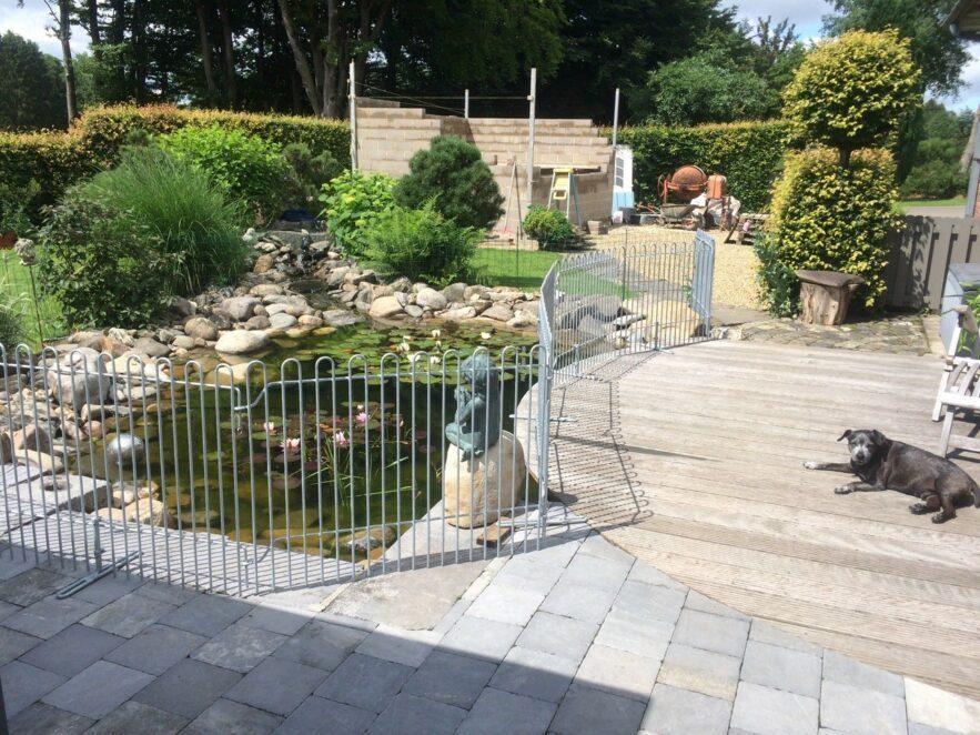 Der Hund liegt auf der mit einem Zaun gesicherten Terrasse