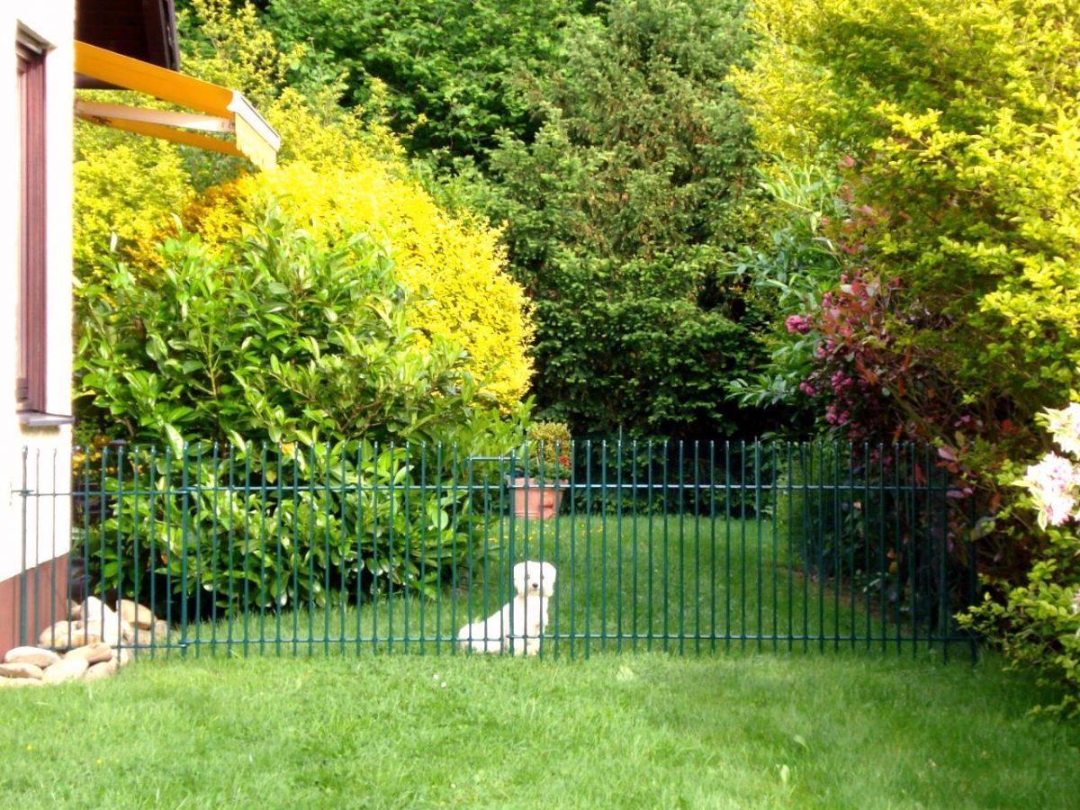 Clôture jardin anneau-engmaschig - melabel® clôtures