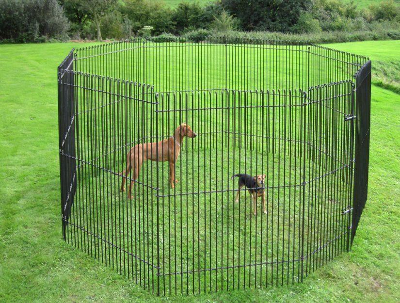 Clôture pour jardin de 195 cm de haut avec porte non traitée brute (peut rouiller).