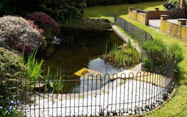 Gitter für einen Schildkröten-Teich