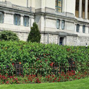 Die Blumenbeete werden mit einem Zaun vor Mensch und Tier geschützt.