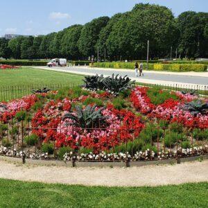 Die Blumenbeete werden mit einem Zaun vor Menschen und Tier geschützt.