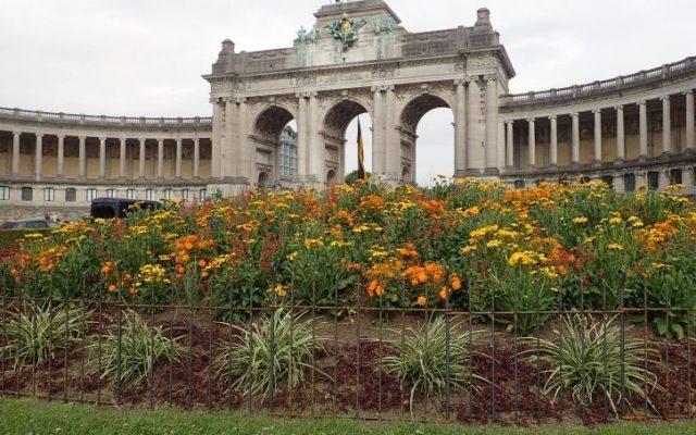 Beetzaun für einen Stadtpark in Brüssel