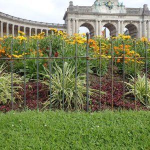 Les clôtures anneau-80-brut en acier á Bruxelles