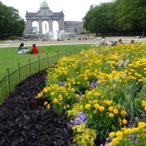 Clôture en acier pour des grandes corbeilles de fleurs dans le parc cinquantenaire au cœur de Bruxelles