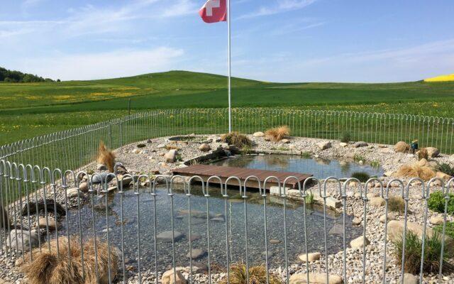 Zaun für einen Teich in der Schweiz