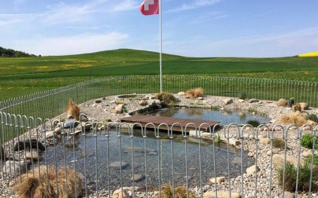 Clôture pour une mare en suisse