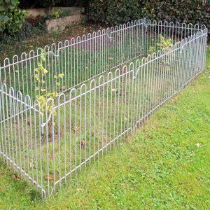 """Les clôtures """"lapins"""" ont été installées pour protéger une plantation de groseilliers."""