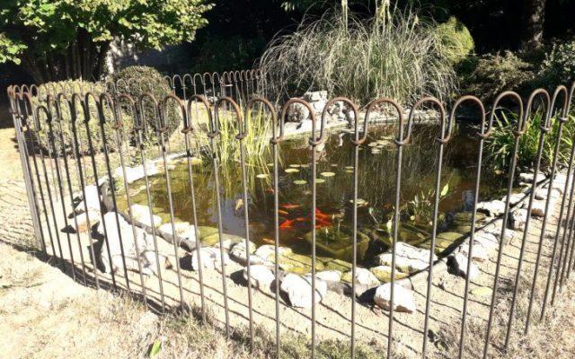 Point de vue et photos de la clôture et notre étang