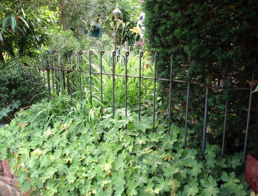 Der rostige Zaun fügt sich sehr schön in eine natürliche Umgebung ein.