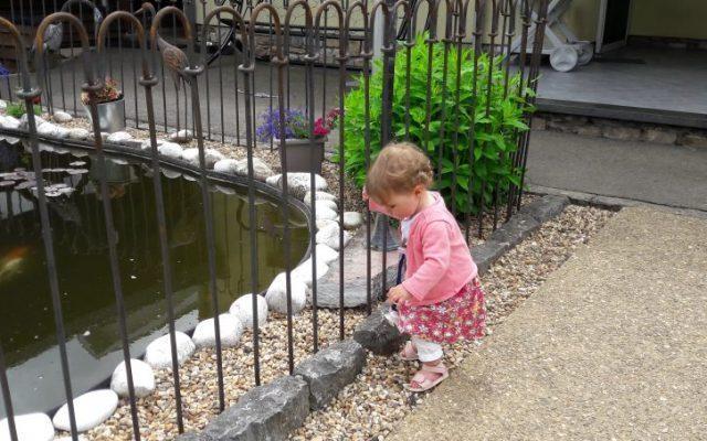Schutzzaun für Kinder vor einem Gartenteich
