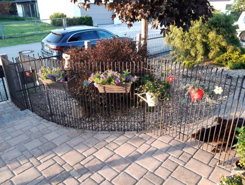 La clôture sépare les chiens, qui ne sont pas si bons les uns envers les autres.