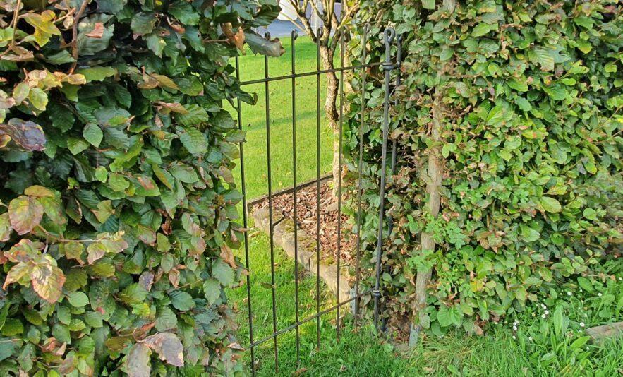 Gartentür aus Eisen in der Lücke einer Hecke eingebaut