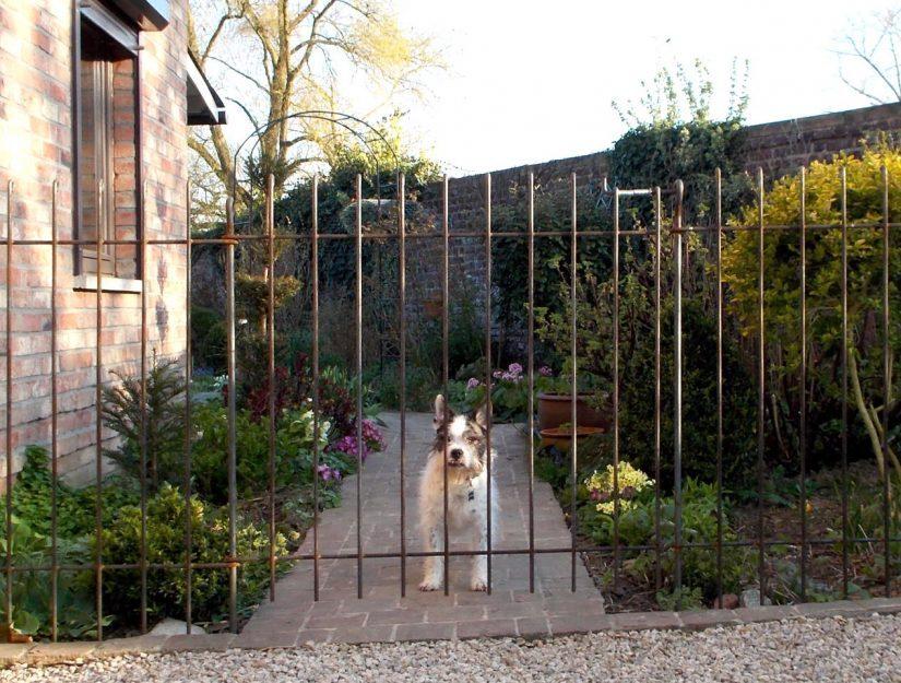Mit einer Tür haben Sie den Zugang und der Hund bleibt auf Ihrem Grundstück.