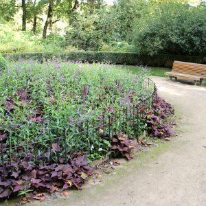 Les fleurs dans le parc sont protégé avec des clôtures an acier.