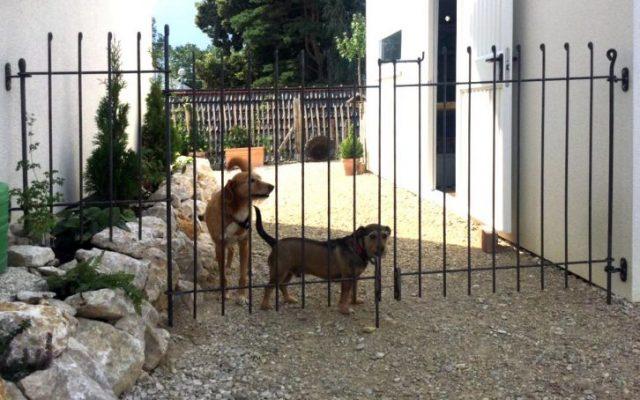 """Der Zaun ist einfach einzigartig – """"Unikat"""""""