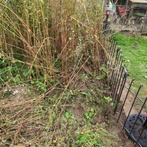 80 cm hoher Trennzaun im Garten mit Gartentür
