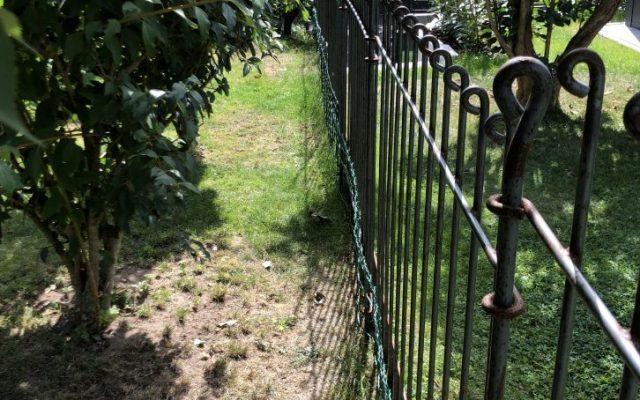 Zaun für den Hund