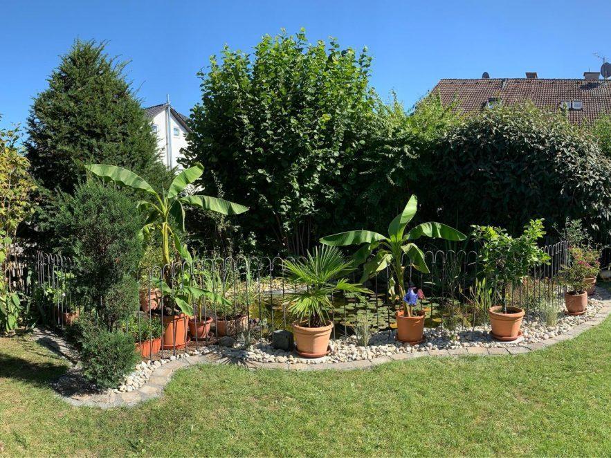 Der Zaun war einfach zum Aufbauen und fügt sich schön in den Garten ein