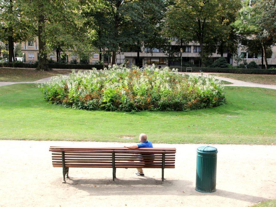 Zaun um ein Blumenbeet im Stadtpark, welches Hunde und Personen aus den Beeten fernhalten soll