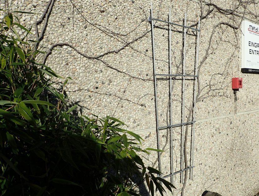 Rankhilfe an die Mauer geschraubt für Ihre Pflanzen.
