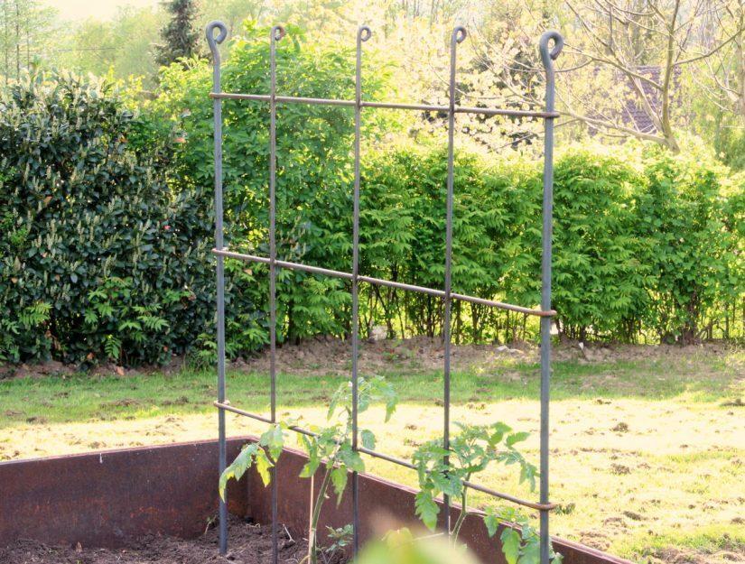 L'espalier peut également être utilisée comme grille à tomates. Largeur 135 cm dont 2 bâtons brutes.