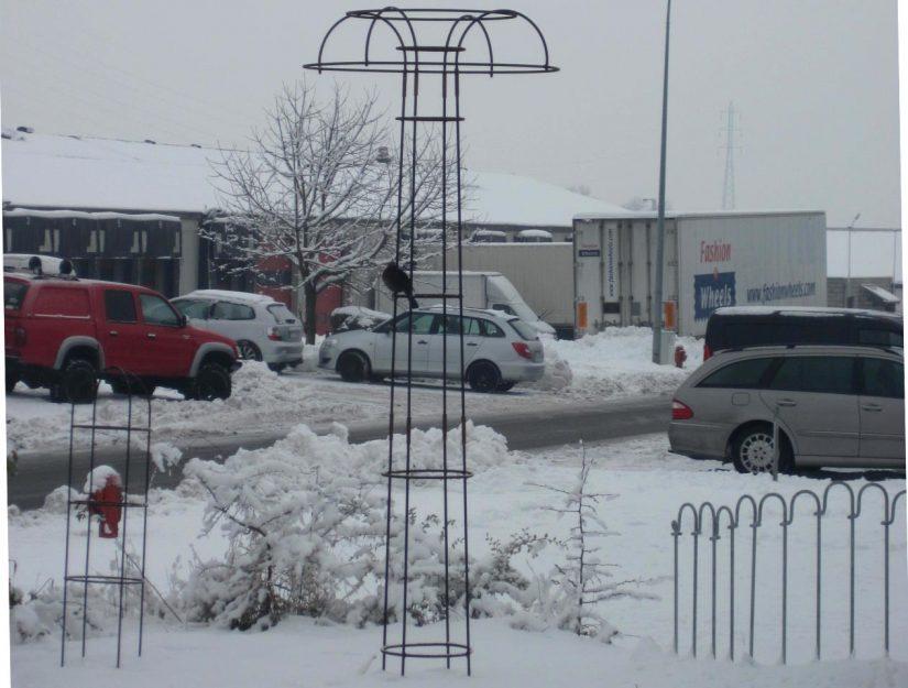 Rosenschirm im Winter mit Vogel vor unserer Werkhalle.
