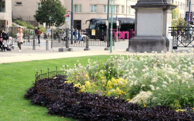 Protection des parterres de fleurs dans le parc de la ville