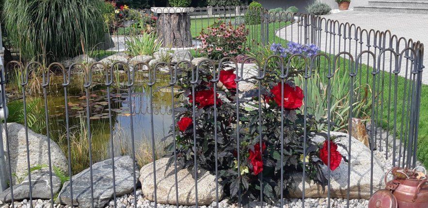 Die schönen roten Blumen bleiben hinter dem Steckzaun geschützt.