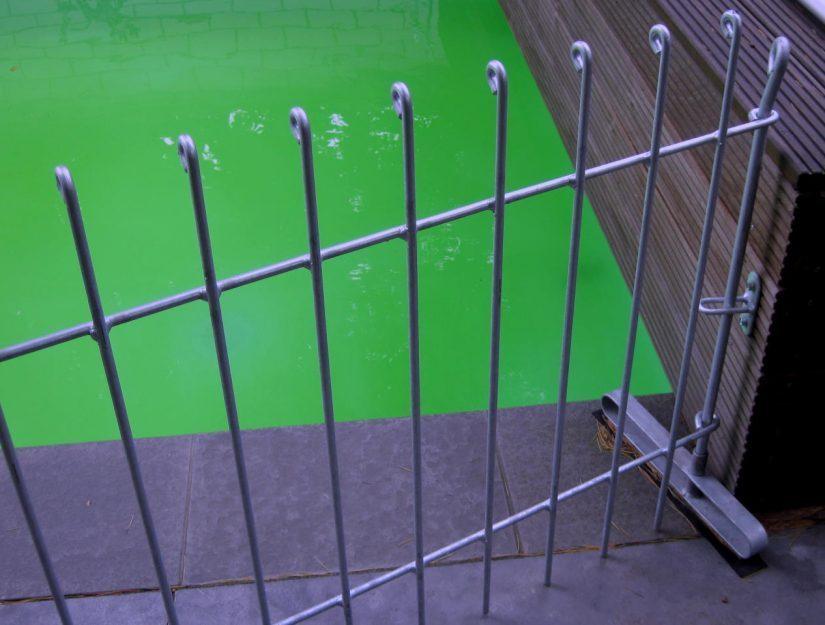 Zaun-Standfuß (Steller) mit Gummiunterlage und Wandbefestigung. Warum das Wasser grün ist wissen wir auch nicht.