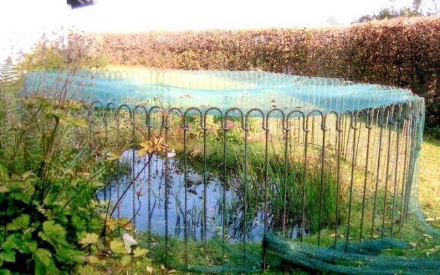 Ein Zaun mit Netz als Schutz vor dem Fischreiher?